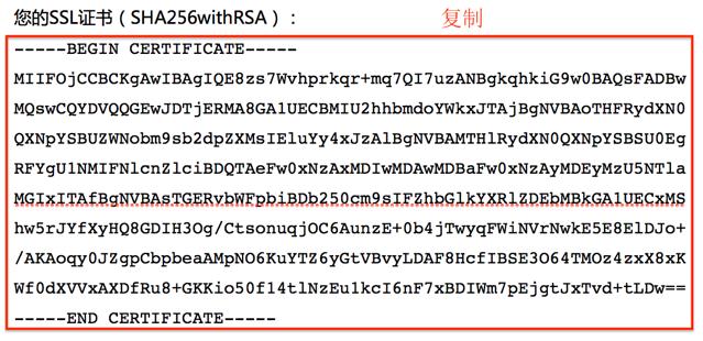 图片显示的是复制并保存为.cer文件的内容