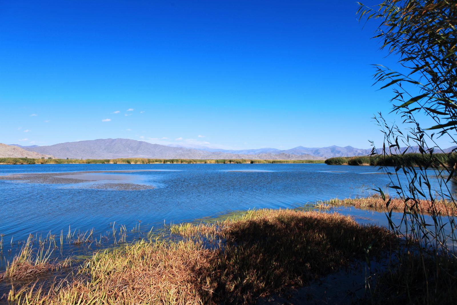 新疆北疆旅游