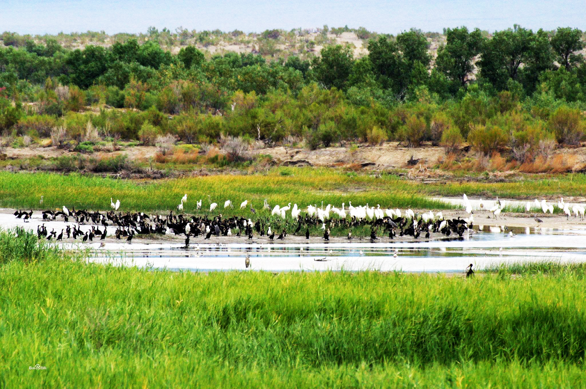 新疆特色旅游