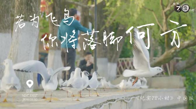 纪实72小时(中国版) (2018) 导演: 张学娇