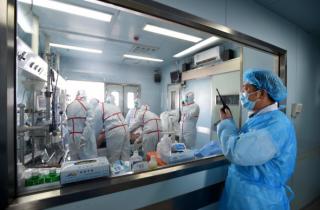 中国拒绝向美国提供H7N9禽流感病毒样本