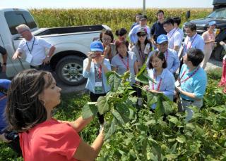 贸易战阴云笼罩之下 中国大豆进口商代表参观美国农场