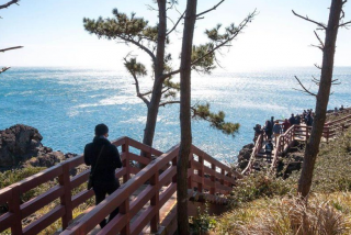 除了减少工时 韩国政府还能如何制造幸福