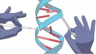 """""""基因魔剪""""不灵了?96%的人对CRISPR存在预先免疫力"""