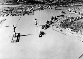 走向珍珠港:历史迷雾中的绝望一击