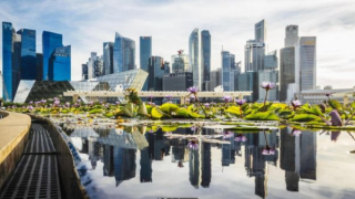 """新加坡环保绿化先进:亚洲""""最干净城市""""一尘不染的成本与收益"""