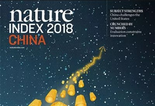 Nature Index增刊回顾中国过去5年科研表现,显示质量和效率方面尚需改善