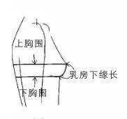 上、下胸围的测量方法