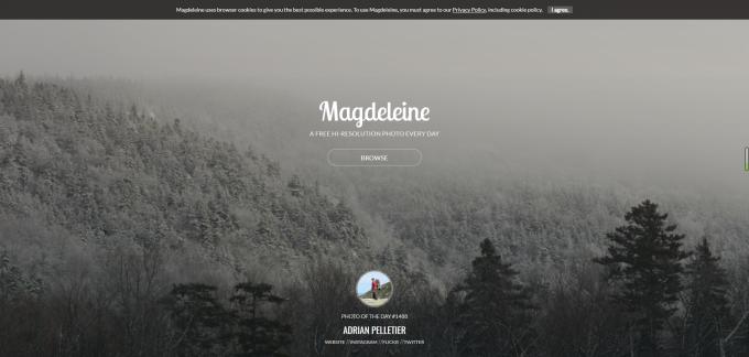 分享几个免版权图片网站-magdeleine
