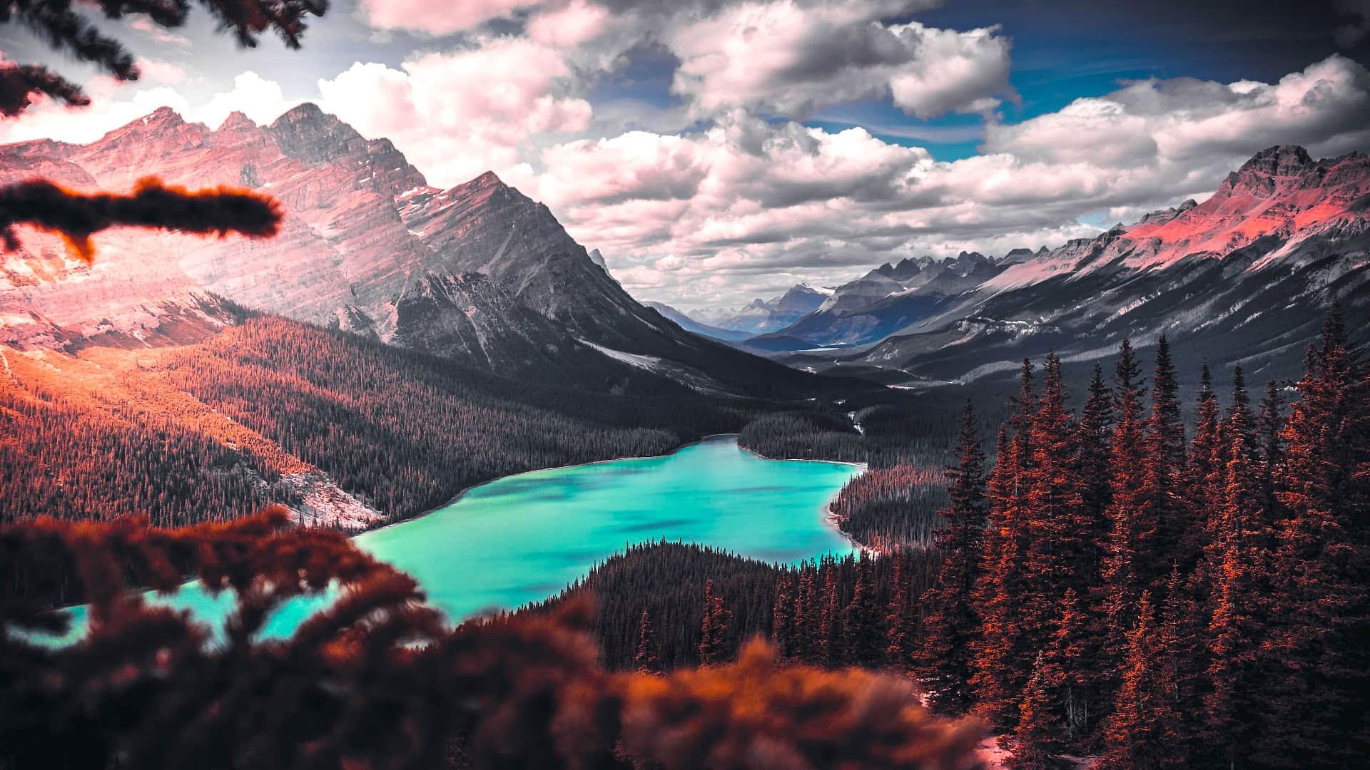 山浪峰涛,层层叠叠,幽幽深谷静谧安宁,红色树林超清桌面壁纸图片