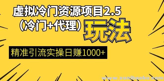 虚拟冷门资源项目2.5(冷门&代理玩法) 精准引流实操日赚1000+(完结)