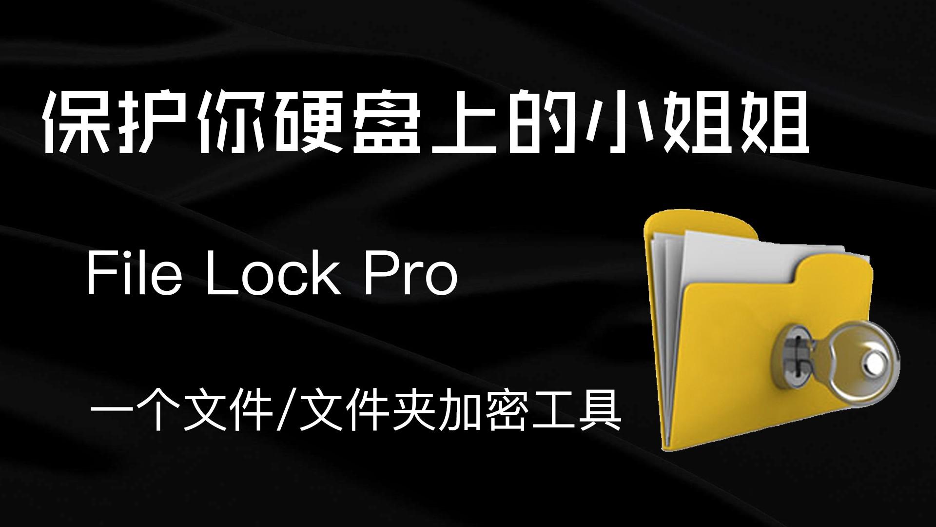 File lock Pro-一款文件和文件夹加密工具