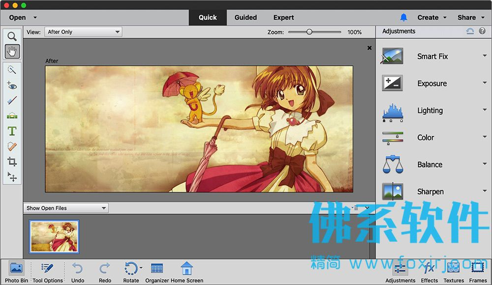 专业的图像编辑处理软件 Adobe Photoshop Elements 2020 for Mac 英文直装版