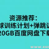 网红篮球训练计划+弹跳训练计划20GB百度网盘下载