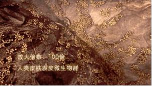 QQ图片20200605153108