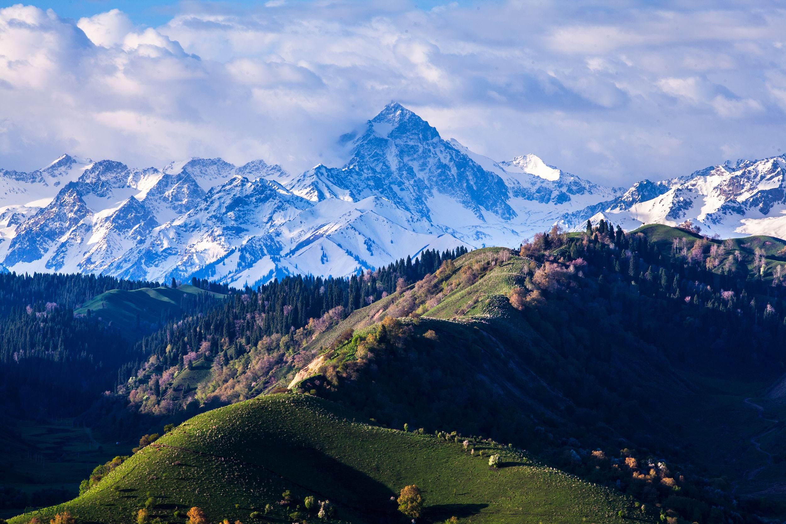 新疆、喀納斯旅游