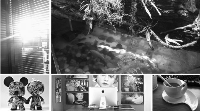 菲尔比克艺术部分环境剪影