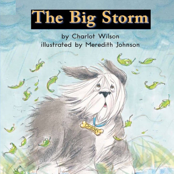 cover thebigstorm