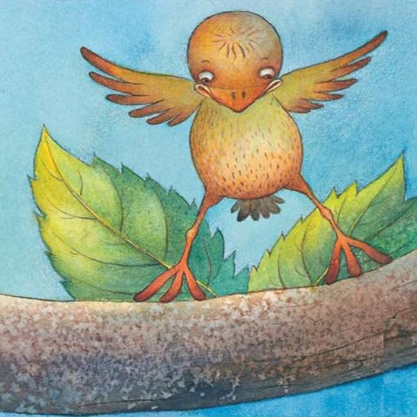 cover cover_babybird