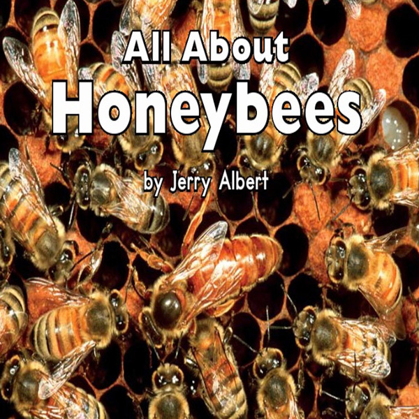 cover allabouthoneybees