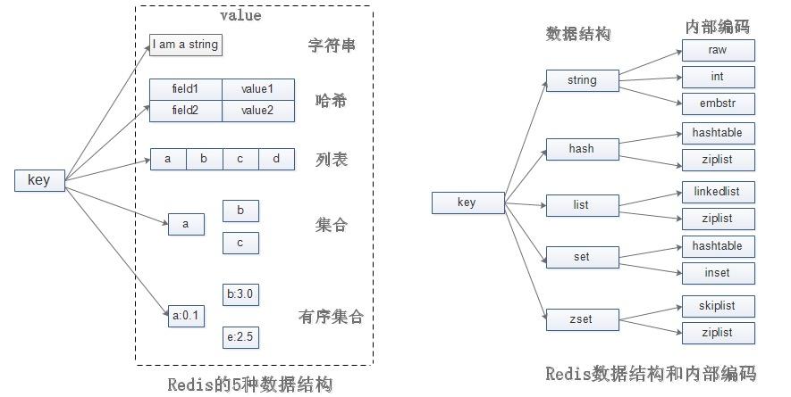 Redis的数据结构和内部编码