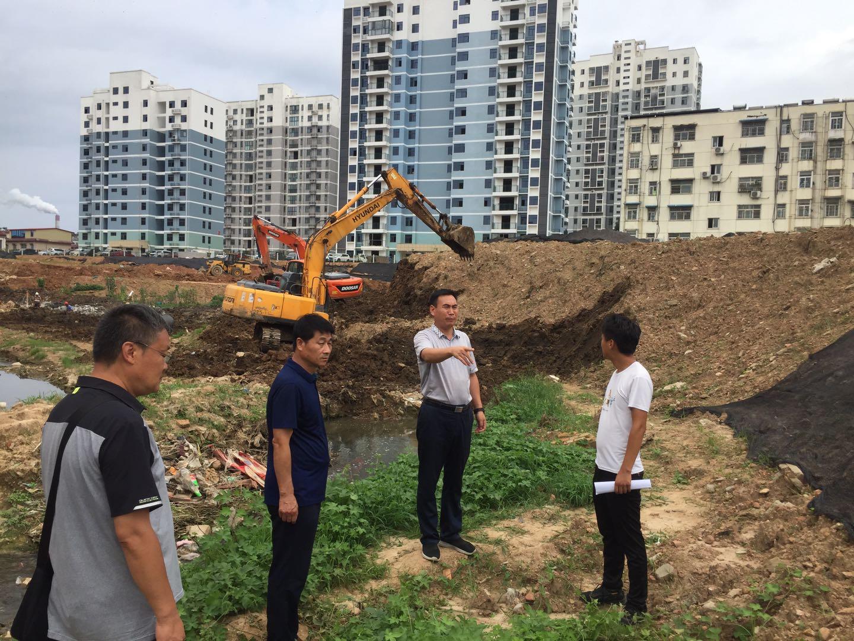 市重点项目办、城管局到南京路电西沟督导检查