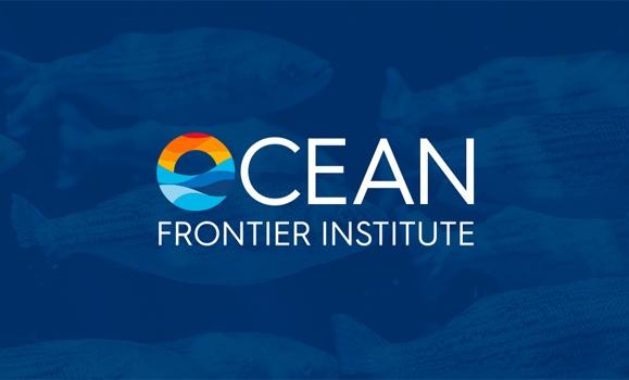 加拿大海洋前沿研究所投入1600万美元开展六个新的海洋研究项目