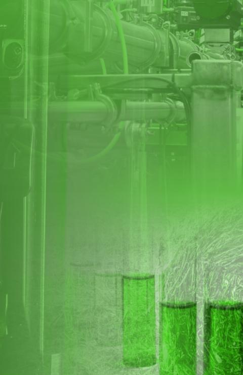 实现低成本生物燃料的综合战略报告