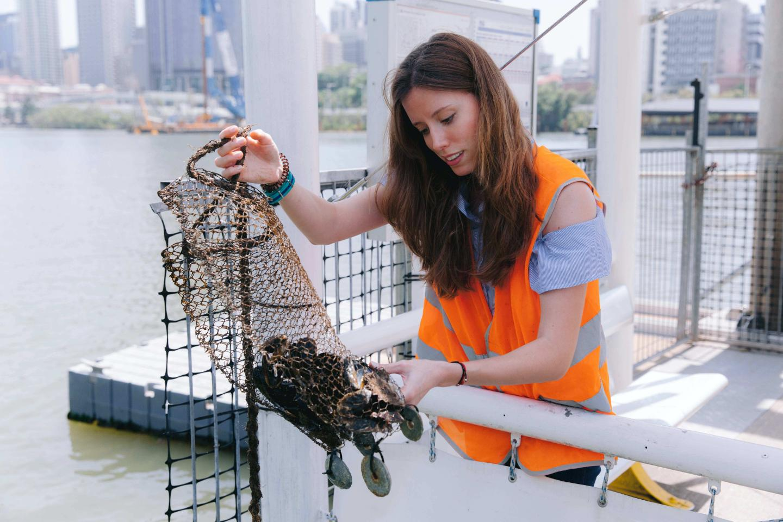 研究发现所有海鲜样本都含有塑料