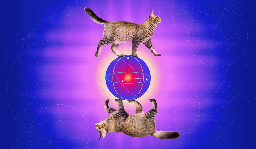 最新量子纠错技术:耶鲁大学物理学家开发一种纠错猫