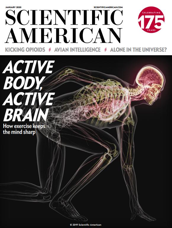 《科学美国人》杂志 英文原版 2009-2020.2合集 高清扫描版PDF