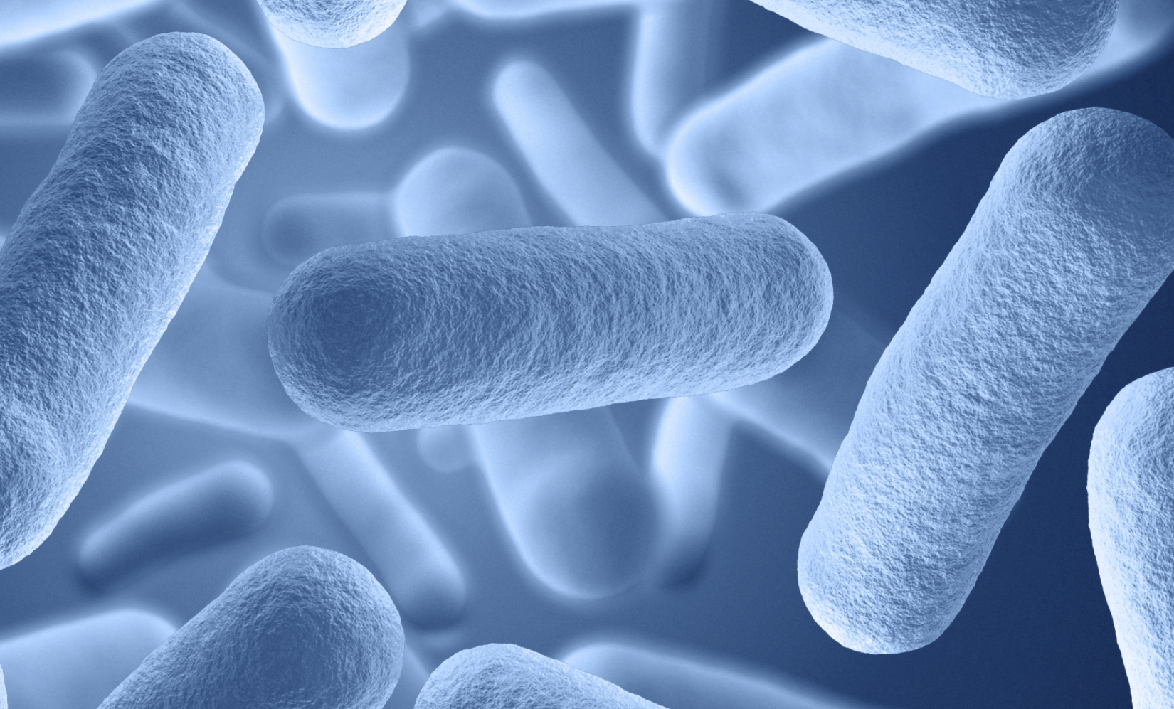 """科学家设法卸下细菌的""""秘密武器"""" 可帮助抗击超级细菌"""