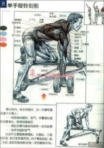 8种背阔肌磨炼要领都是什么-追梦健身网
