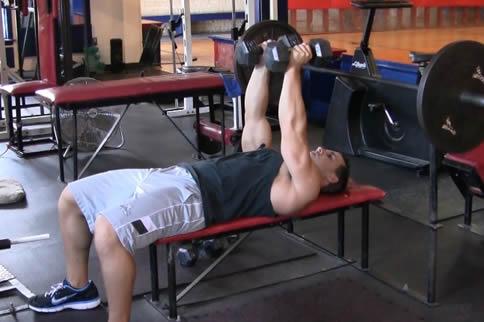 前锯肌在哪一个部位 前锯肌怎样练-追梦健身网