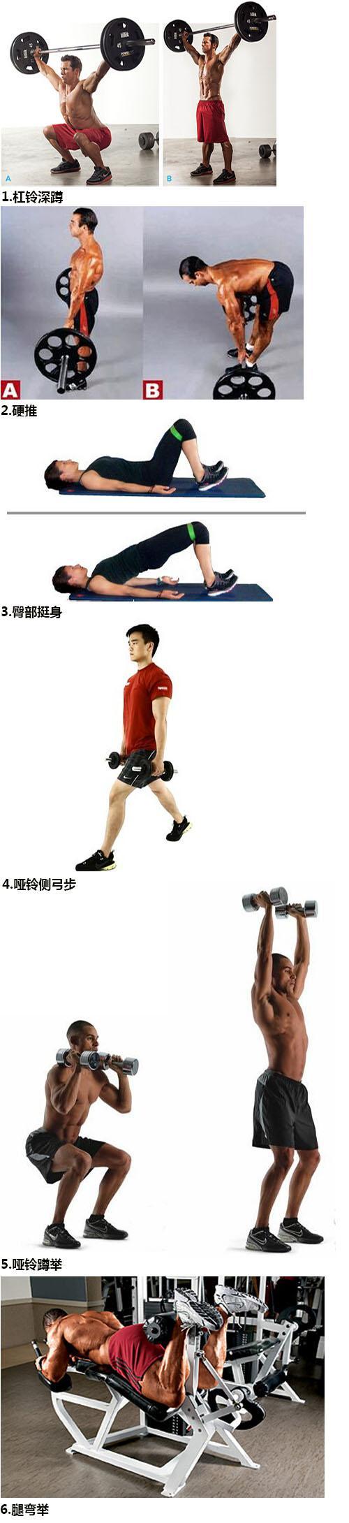 男性腿部练习设计(图解)-追梦健身网