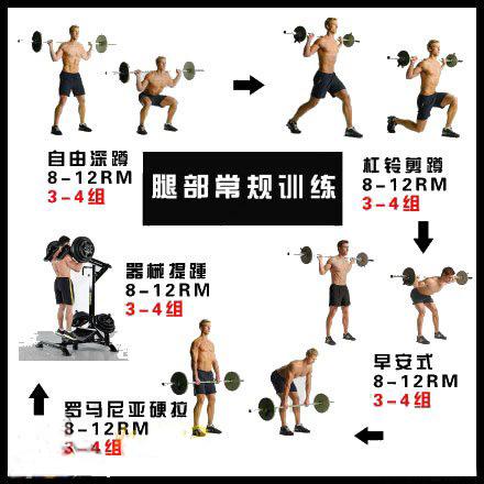 腿部通例练习卡片-追梦健身网