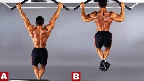 背部练习设计四行动 让你秀出诱人曲线-追梦健身网