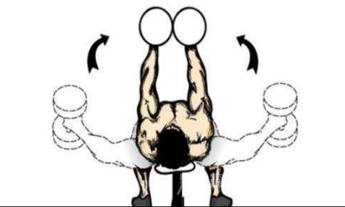 胸大肌怎样磨炼-追梦健身网