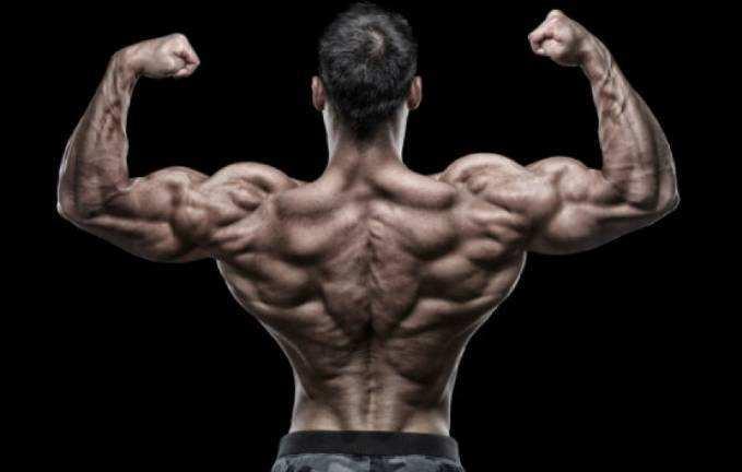 合适大胖子的磨炼健身设计-追梦健身网