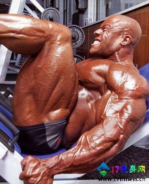 男性大腿肌肉群训练方法-追梦健身网