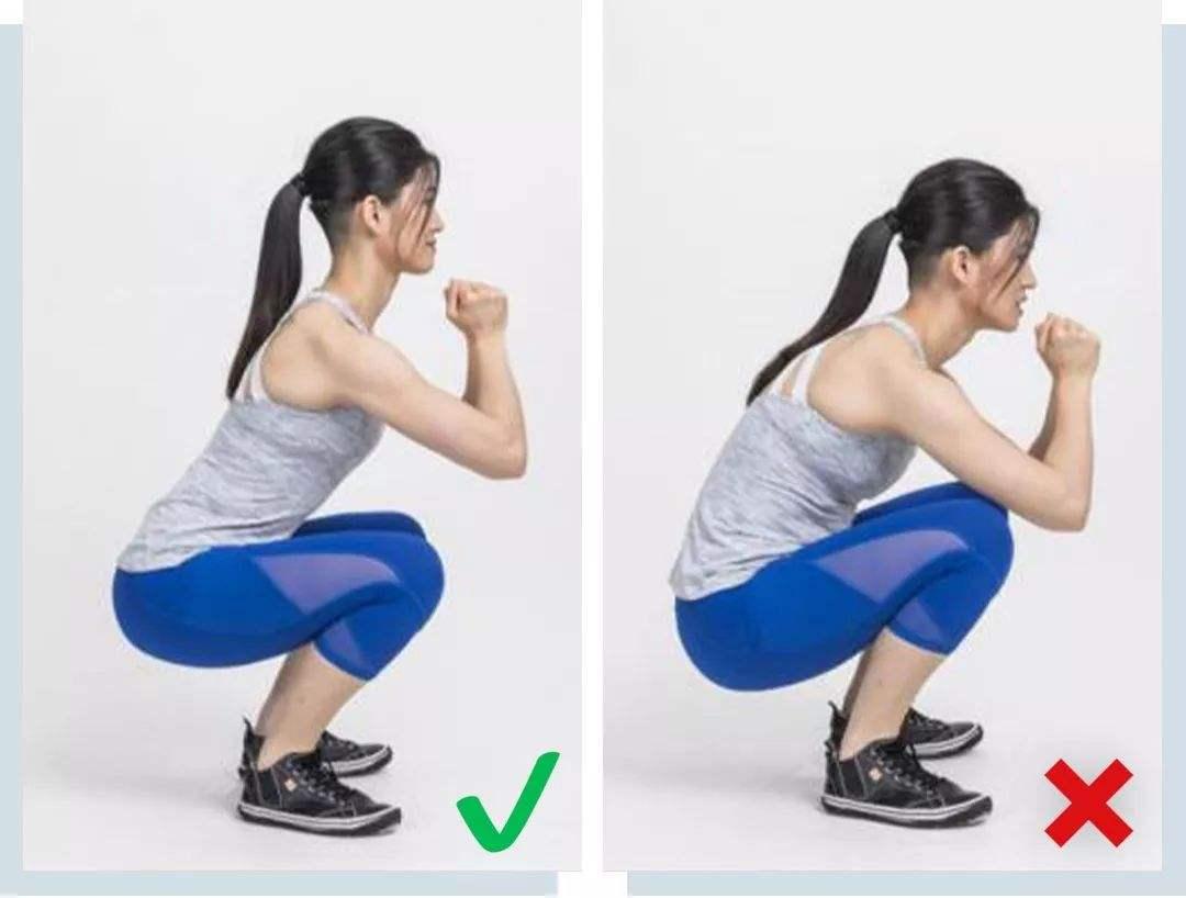 股外侧肌在哪个位置 股外侧肌怎样练习-追梦健身网