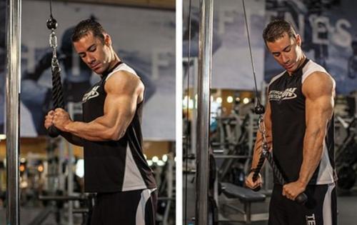 肱三头肌杠铃颈后臂屈伸-追梦健身网