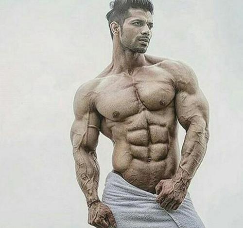 新手健身胸肌几天练一次 天天练适宜吗-追梦健身网