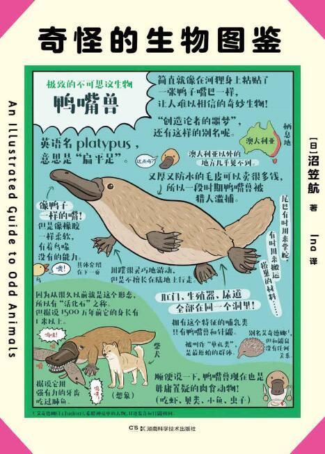 《奇怪的生物图鉴》[日] 沼笠航epub+mobi+azw3