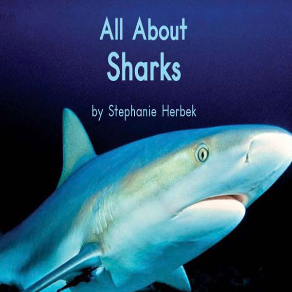 cover cover_allaboutsharks