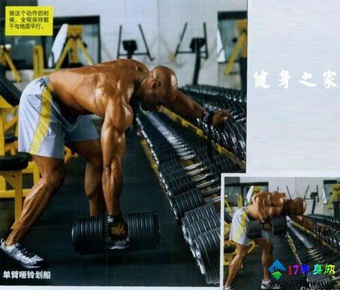 背部肌肉练习设计-追梦健身网