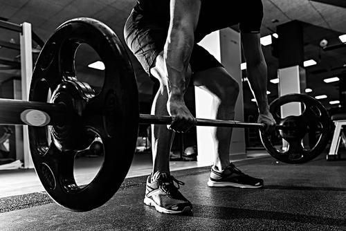 自测你的肌肉质量,练就一身肌肉-追梦健身网