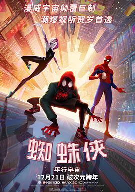 蜘蛛侠:平行宇宙 Spider-Man: Into the Spider-Verse