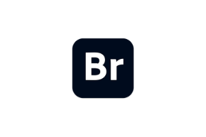 Adobe Bridge 2020 v10.1.1免激活 中文破解版 多媒体文件组织管理工具