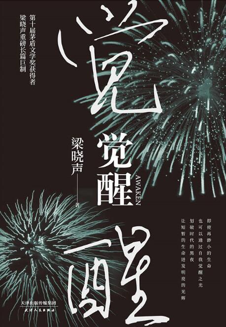 《觉醒(2020年精装版)》梁晓声 epub+mobi+azw3